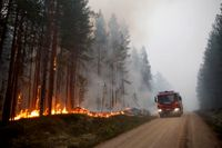 Bättre beredskap behövs när skogen brinner.