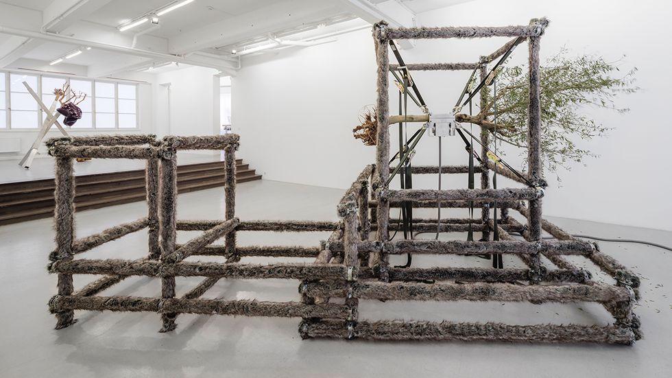 """""""A wolf, an olive tree and circumstances"""", aluminiumrör, remmar, fuskpäls, elmotor, elektriska komponenter, olivträ, 2014."""