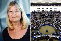 EU-pengar finansierar nazistmöte i Sverige