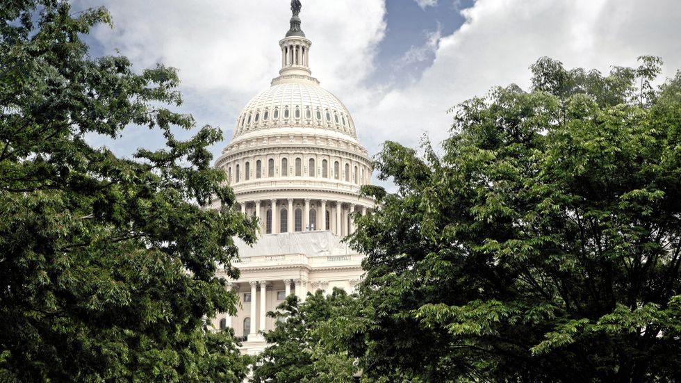 Kapitolium, USA:s parlamentsbyggnad i Washington DC.