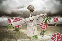lllustration: Henrik Malmsten
