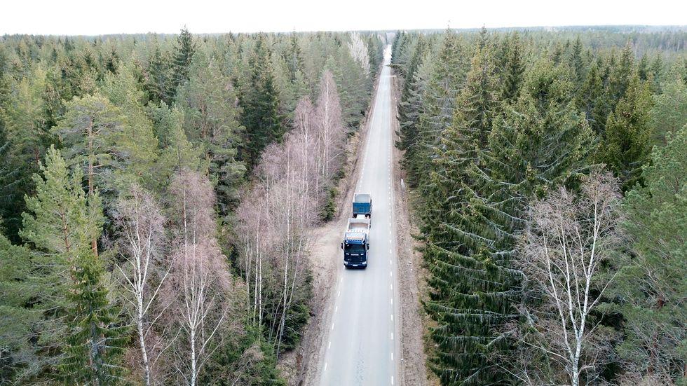 Skogsbolaget Stora Enso rapporterar. Arkivbild.