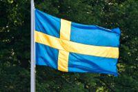 Vilka krafter stödjer Sverige utomlands?