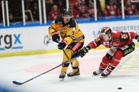 Hockeysäsongen är över på grund av coronavirusets spridning och för klubbarna råder ett ovisst ekonomiskt läge. Arkivbild.