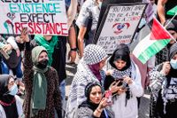 Demonstranter i Dearborn i amerikanska delstaten Michigan visar sitt stöd för Palestina i samband med president Joe Bidens besök hos biltillverkaren Ford.