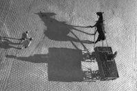 Skuggan av en häst och vagn i Göteborg 1937.