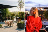 Cocktails och bio eller boule med bar? SvD:s tipsar om roliga aktiviteter i Stockholm.