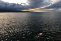 En man simmar i Hilo, några mil från vulkanen. Bild från tidigare i maj.