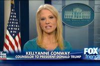 Kellyanne Conway när hon i tv uppmanade tittarna att köpa presidentdottern Ivanka Trumps klädkollektion.
