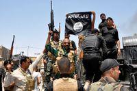 Irakiska säkerhetsstyrkor tar ned Isis flagga