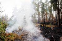 Det brinner i terrängen vid orten Eggby. Arkivbild.