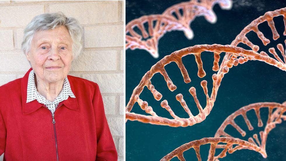 Artikelförfattaren Marianne Rasmuson, professor em i genetik vid Umeå universitet, fyller 100 år idag.