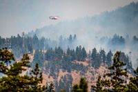 En vattenbombande helikopter nära Lytton, British Columbia, i fredags.