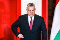 Ungerns premiärminister Viktor Orbán vill ena Europas ytterhöger.