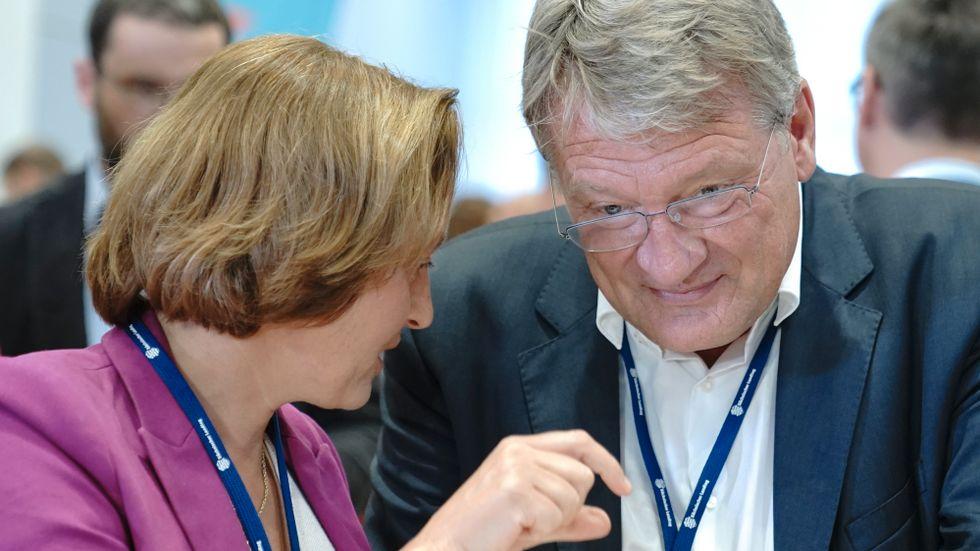 AFD:s Jörg Meuthen och Beatrix von Storch under söndagens delstatsval i Brandenburt och Sachsen.