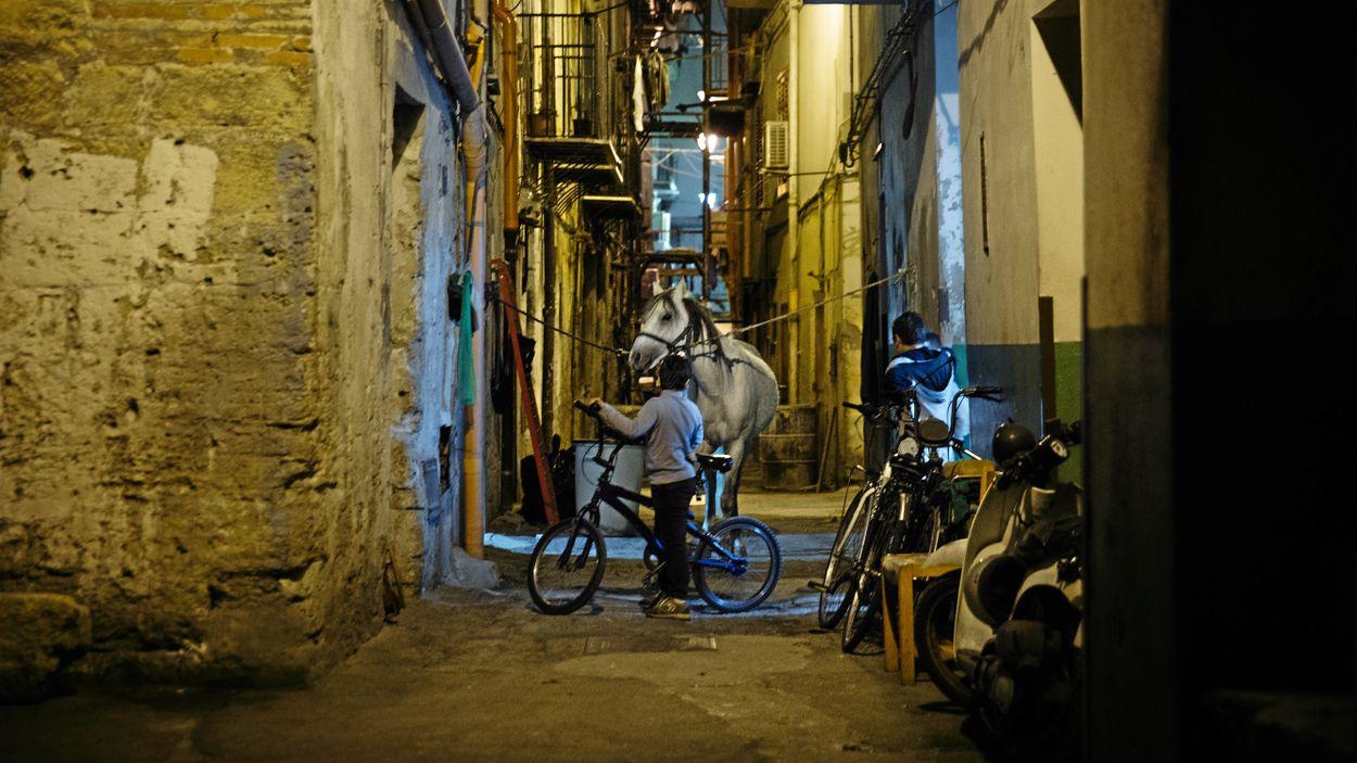 När solen går ner byter den populära marknaden skepnad – droger, illegala racinghästar och människor säljs här i skydd av mörkret.