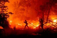 """Brandmännens kamp i USA: """"Det värsta jag sett"""""""