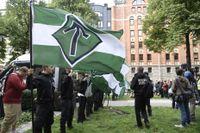 NMR-medlemmar demonstrerar med fanor med symbolen tyrrunan. Arkivbild.