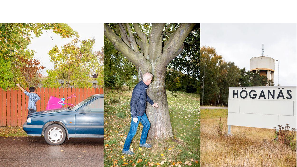 """Lars Vilks förevisar sin barndoms klätterträd. """"Precis här gick gränsen mot friheten."""""""