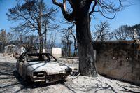 Nedbrända hus och bilvrak i grekiska Lampiri.
