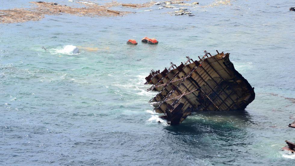 Renahaveriet är Nya Zeelands hittills värsta föroreningskatastrof till havs. Kort efter grundstötningen läckte omkring 350 ton olja ut och minst 1300 fåglar miste livet. En armé av frivilliga finkammade kusten och räddade flera hundra fåglar.