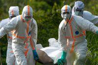 Ebolaepidemi har tidigare drabbat bland annat Kongo-Kinshasa. Arkivbild.