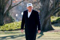 Donald Trump på gräsmattan utanför Vita huset.