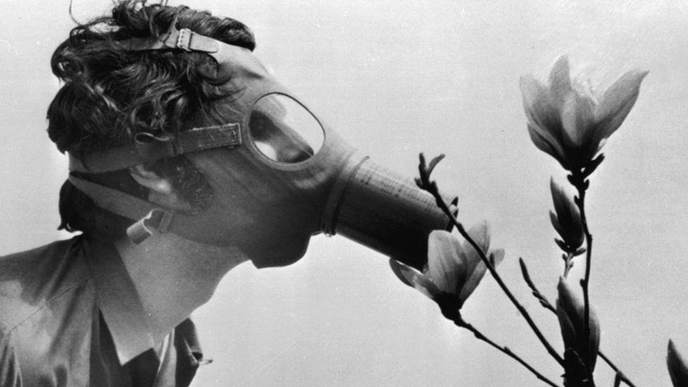 En student firar den allra första Earth Day den 22 april 1970 i New York. När Earth Day i veckan firas för femtionde gången blir det för första gången i digital form på grund av coronapandemin.
