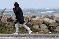 SMHI klass 1-varnar för mycket hårda vindar i delar av norra Sverige. Arkivbild.