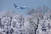 Lägre rörelseresultat för tyska flygjätten Lufthansa, men bolaget ökar i Sverige. Arkivbild