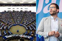 Jimmie Åkessons SD kommer att ingå i en ny partigrupp i EU-parlamentet tillsammans med bland andra brittiska Tories, polska Lag och rättvisa, Dansk Folkeparti och finska Sannfinnländarna.