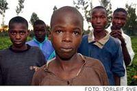 För inte länge sedan levde de på gatan – i dag sköter de egna hushåll. Från vänster Evans Barongo, Dennis Matoke, Jackson Ongori, Douglas Matoke och Caleb Matoke.