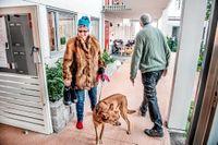 """Virpi Koivumäki på väg ut med hunden Nam Tan i """"Bovieran"""" i Västerhaninge, där Willy Brorsson är ekonomiansvarig."""