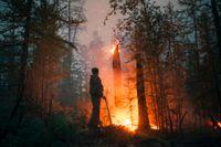 Enorma bränder härjar sedan flera veckor tillbaka i nordöstra Sibirien. På bilden övervakar en frivillig brandman elden i distriktet Gorny den 22 juli.