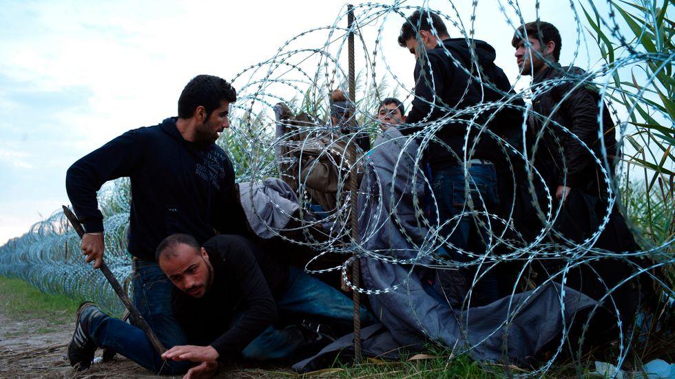 Syriska flyktingar tar sig under taggtrådsbarriären som den ungerska regeringen låtit sätta upp längs gränsen till Serbien.