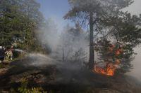 Många frivilliga kallades in för att hjälpa till med arbetet med under sommarens skogsbränder. Arkivbild.