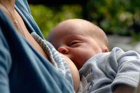 Forskare har uppskattat att spädbarn som får 75 procent av sitt dagliga intag från bröstmjölk, har fått ungefär 28 procent av sina tarmbakterier från bröstmjölk.