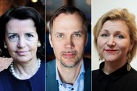 Anne Ramberg, Sveriges advokatsamfund, Anders L. Pettersson, Civil Rights Defenders och Erica Molin, Rådgivningsbyrån för asylsökande och flyktingar.
