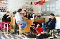 """Uggla Kaffebar & Café i Malmö utsågs som vinnare i kategorin """"Årets Stjärnskott"""" med motiveringen: För att ha skapat en unik stämningsfull mötesplats där gäster i alla åldrar är i fokus likaväl som kaffet, de goda smörgåsarna och kakorna bakade med kärlek och humor."""