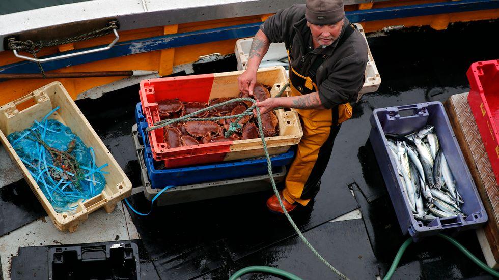 Fiskaren Andrew Gillie tar i land färska krabbor, hummer och makrill i hamnen i Eyemouth i Skottland. Arkivfoto.