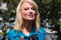President Donald Trumps topprådgivare Kellyanne Conway på en pressträff utanför Vita huset på tisdagen.