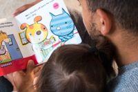 """Ungerns nationalistiska regeringsparti riktar kritik mot barnbok som de menar är """"homosexuell propaganda"""". Arkivbild."""
