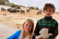 Alice och August på safari i Chobe National Park.
