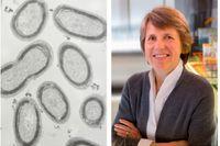 Sallie Chisholm har tilldelats 2019 års Crafoordpris  i biovetenskaper. Till vänster plankton innehållande Prochlorococcus.
