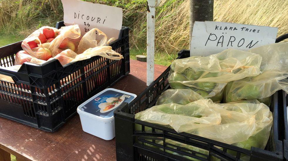 Ta frukt, lägg pengar i lådan. Tillitsfull fruktförsäljning längs vägen vid Södra Mellby, Österlen