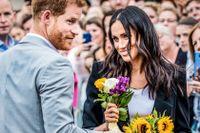 Harry och Meghan har avsagt sig sina kungliga titlar och flyttat till USA.