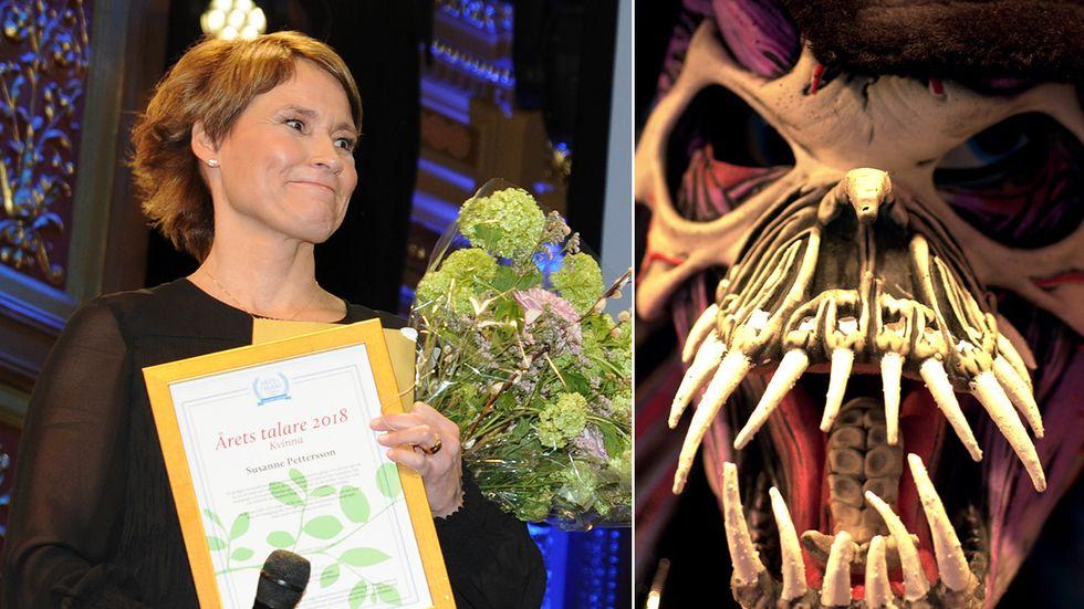 Susanne Pettersson, årets kvinnliga talare 2018, har ingen talskräck. Andra har gärna Halloween-mask på scen.