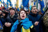 Pro-ukrainska aktivister i en demonstration på tre-årsdagen efter Maidan (upproret på Självständighetstorget) i Ukrainas huvudstad Kiev.