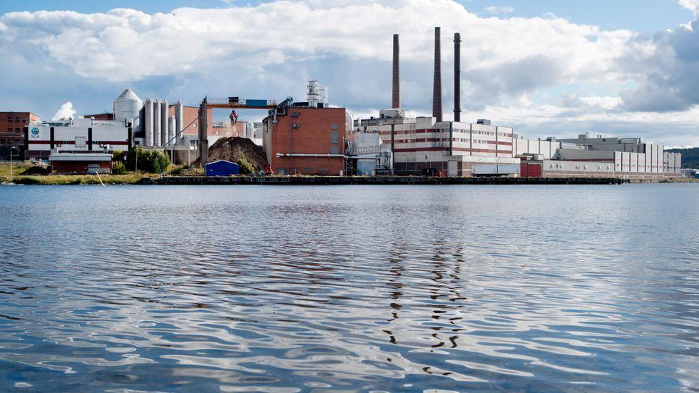 Ortviken i Sundsvall, en av platserna där så kallade fiberbankar och fiberrika sediment finns på botten till följd av äldre industriverksamhet.