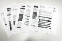 Dokument från Finansinspektionen – hemligt till vissa delar.